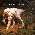 Address Book <br>